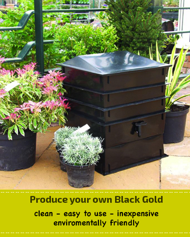 own-black-gold